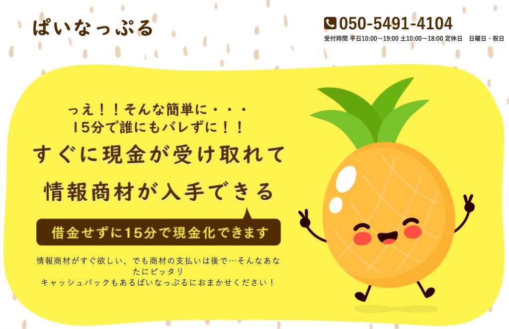 ぱいなっぷる-スマートツケ払いの会社情報とサービス内容